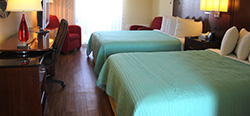 Newly Renovated Guest Rooms and Suites